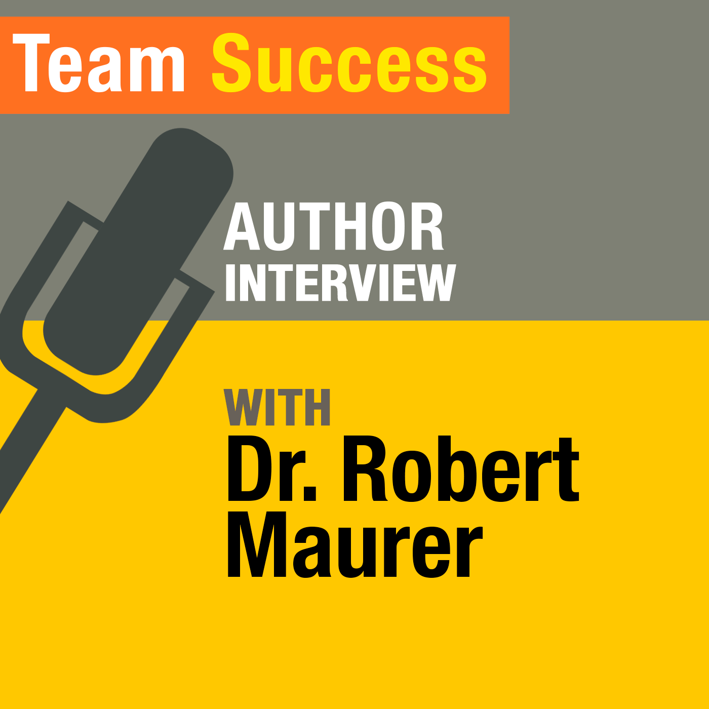 An Interview With Dr. Robert Maurer - Team Success Podcast