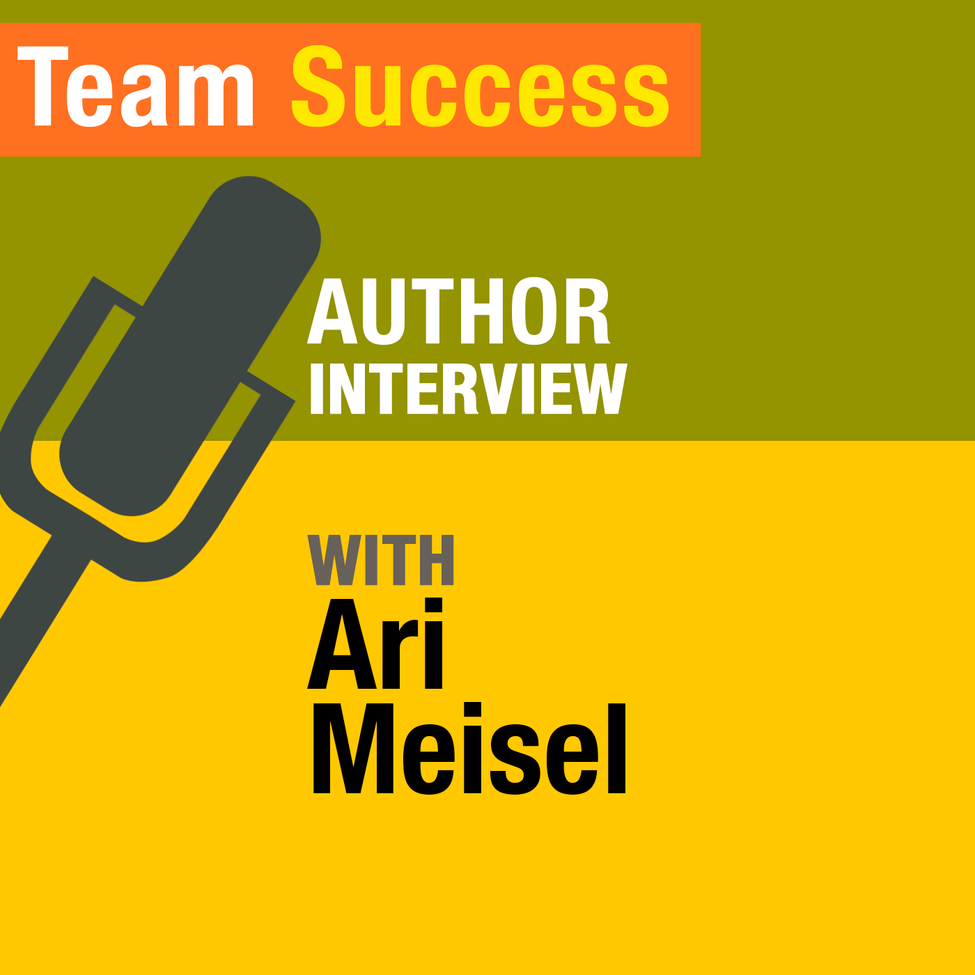 An Interview With Ari Meisel - Team Success Podcast