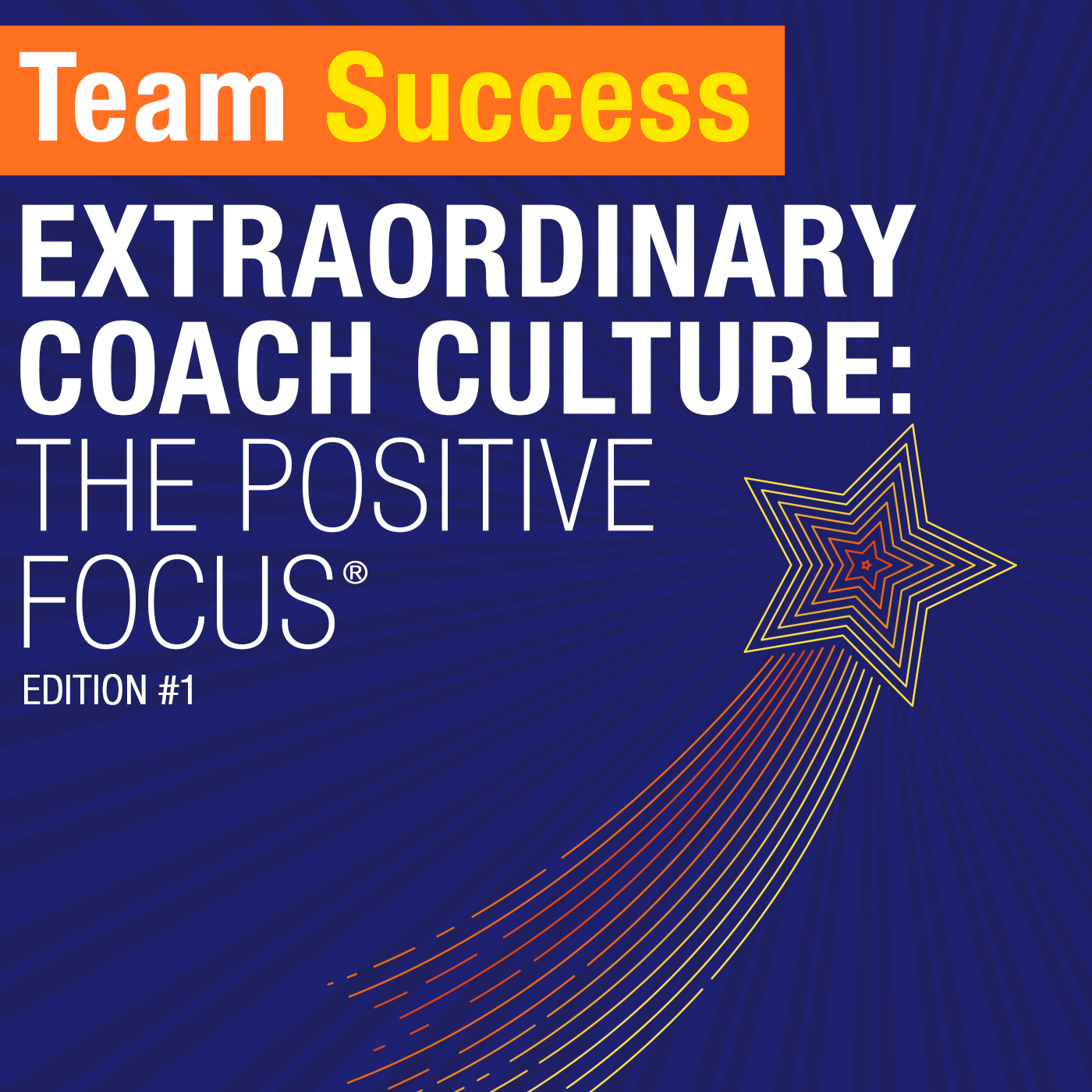 Extraordinary Coach Culture The Positive Focus
